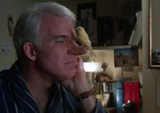 Стив Мартин (Steve Мартин) не только лишь сообщил план и стал аккуратным кинопродюсером истории о Сирано де Бержераке, но также и сам сыграл носатого богатыря в комедии