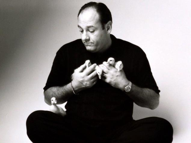Джеймс Гандольфини (1961-2013), американский актер