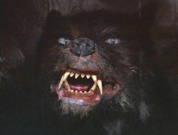 """Гморк. Волк-оборотень, слуга непоименованной в фильме силы, стоящей за """"Ничто"""". Сначала в его """"роли"""" хотели снять датского дога, закамуфлированного под волка, но потом от этой идеи отказались, поскольку уж слишком очевидно было, что это даже не волк, и уж тем более не оборотень. В итоге решено было снимать погоню Гморка за Атрейю по Болотам Печали как бы """"от первого лица"""", так что видны были только лапы (в итоге на подвижную платформу установили камеру, и уложили актёра, который размахивал надетыми на руки мохнатыми лапами). Фактически, Гморка мы в фильме видим только по частям, причём больше всего видна зубастая чёрная морда, торчащие клыки и злобно морщащийся нос. Голова чудовища могла совершать 59 разных движений — у неё двигались губы, нос, язык; кроме того, необходимо было имитировать и человеческую речь. Управляли головой Гморка сразу 17 операторов, причём им пришлось потратить немало усилий, чтобы скоординировать свои действия. Изображения с камеры транслировались сразу на множество телеэкранов, чтобы каждый из операторов мог видеть, что происходит. В итоге весь материал с Гморком удалось отснять всего за два часа. Как и в случае с Фалькором, голову разрабатывал Артур Коллин, и изготавливали Хуан и Джузеппе Тортора с командой помощников. Реакция. Фильм получил чрезвычайно лестные отзывы от критиков — в том числе и за визуальные эффекты, но фактически провалился в кинопрокате, не окупив свой бюджет, по тем временам громадный для европейского фильма (27 млн долларов). Впрочем, когда его выпустили на DVD, он стал одним из самых продаваемых детских фильмов в истории, и кроме того, в Европе некоторые телеканалы его регулярно показывают на Рождество — примерно как у нас на Новый Год всё время норовят показать """"Иронию Судьбы"""". IMDB упоминает о четырёх разных наградах и семи номинациях. Награду Saturn Award получил Ноа Хэтуэй, исполнитель роли Атрейю. Фильм также получил такие награды как Bavarian Film Award, Film Award in Gold и Golden Screen."""