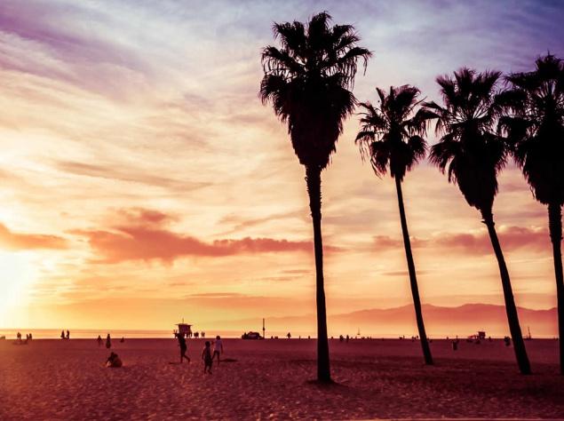 Venice Beach – один из самых популярных пляжей