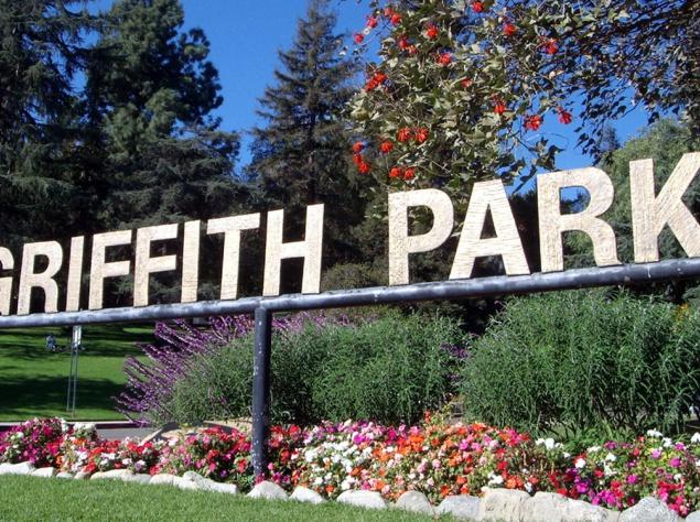 Гриффит-парк - 1700 гектаров деревьев и свежего воздуха