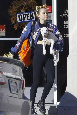 Майли Сайрус с новым псом посетила ветеринарного врача