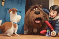 картинки с Секрети домашніх тварин