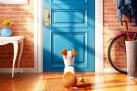 фото ко фильму Секрети домашніх тварин