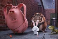 кадры с фильма Секрети домашніх тварин