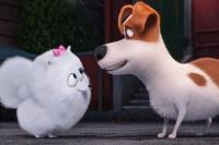 интересные моменты фильма Секрети домашніх тварин