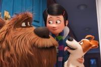 новый план ко фильму Секрети домашніх тварин