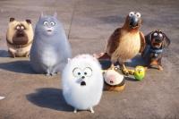 фильм Секрети домашніх тварин