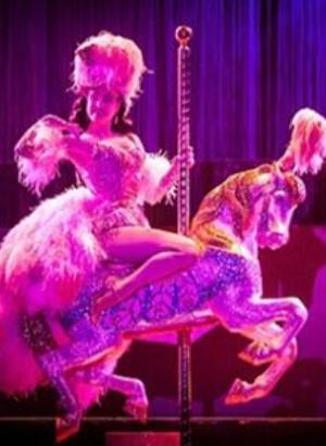 Дита Фон Тиз поразила своих поклонников эпатажным костюмом