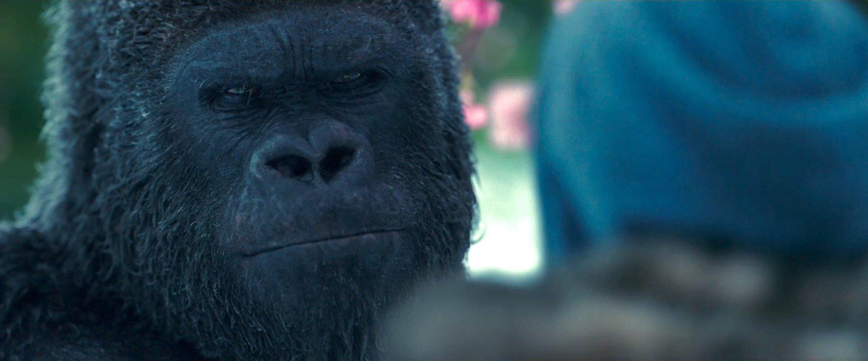 Планета обезьян Революция смотреть онлайн бесплатно (2 часа 10 минут)