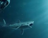 """Сборы фильма """"Мег"""" превысили полмиллиарда"""