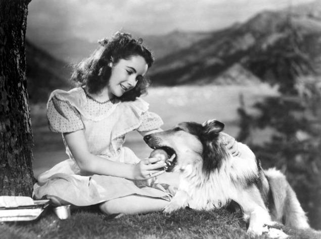 Лесси (1943)