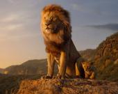 """Сиквел """"Короля льва"""" снимет режиссер """"Лунного света"""" Барри Дженкинс"""