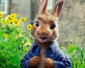 Продолжение истории про маленького и непоседливого кролика Петрика
