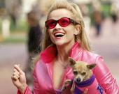 5 фильмов, которые должна посмотреть каждая блондинка